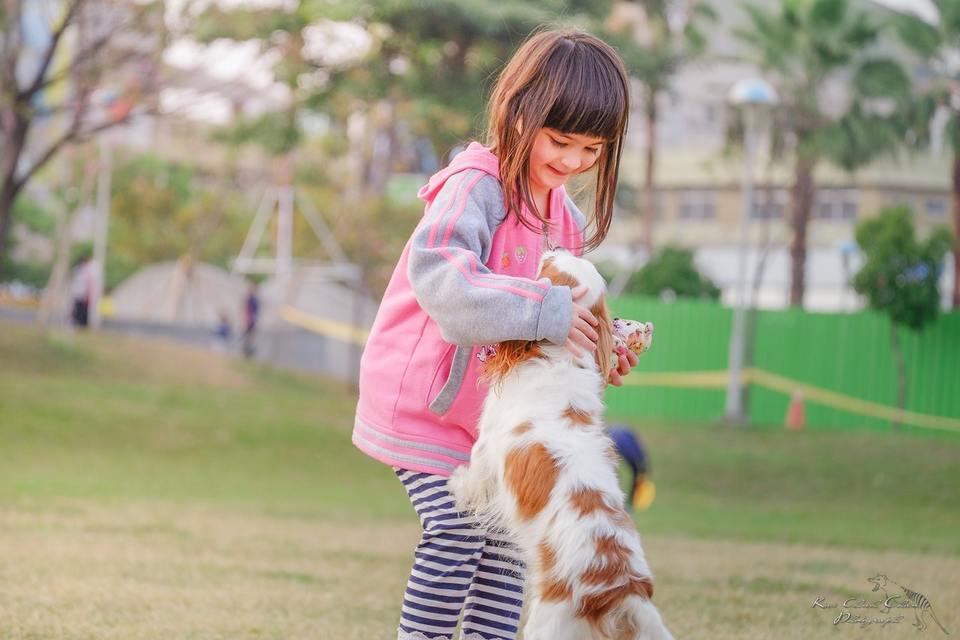 Importancia de las mascotas a temprana edad